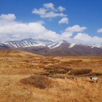 25-kyrgyzstan